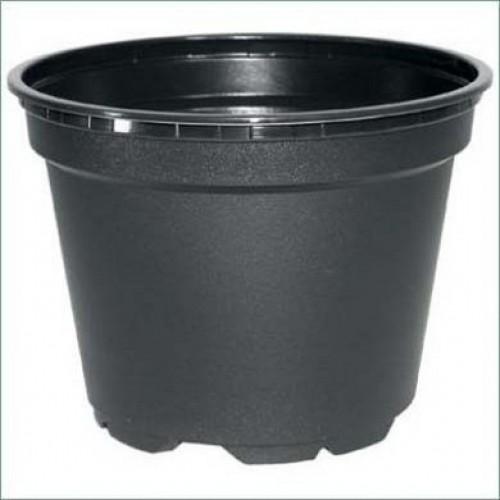Carry Tray - 9cm Round / Square Pots   ScotPlants Direct